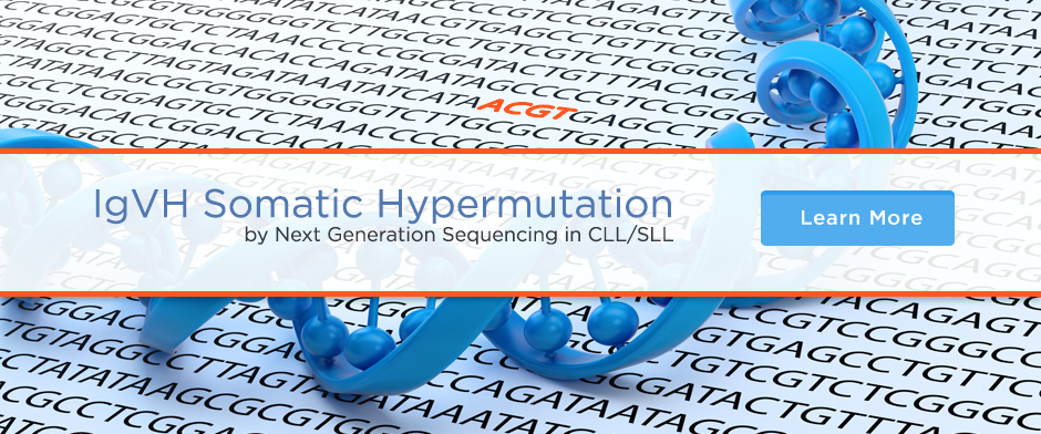 IgVH Somatic Hypermutation by Next Generation Sequencing